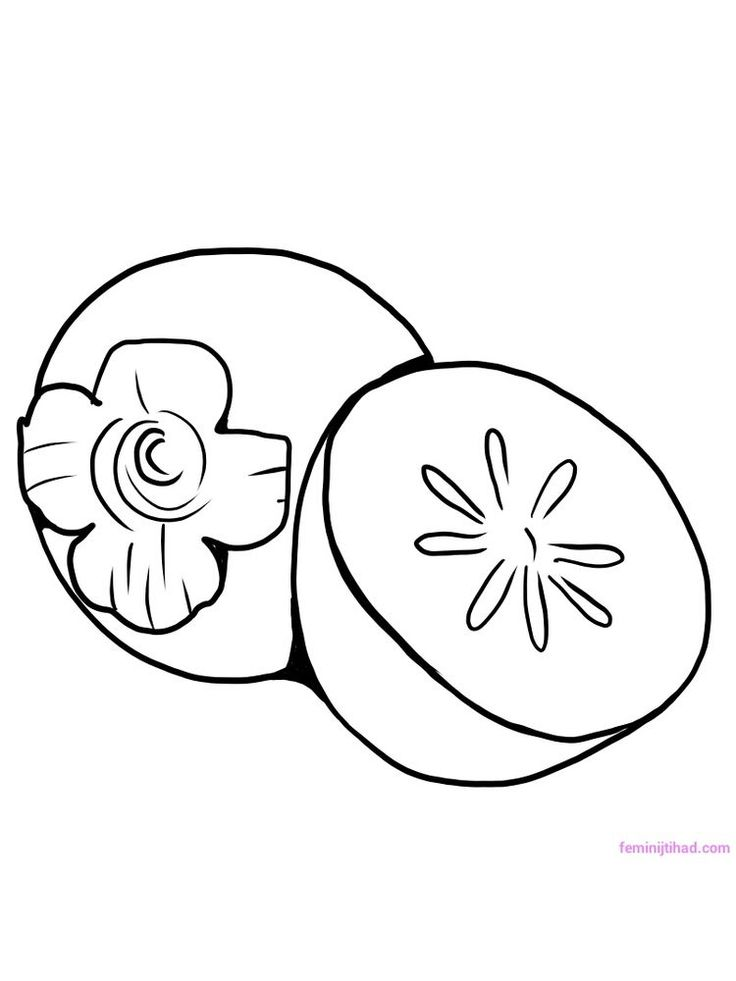 coloring different fruits persimmon coloring pages pdf persimmon is the name of the fruits coloring different