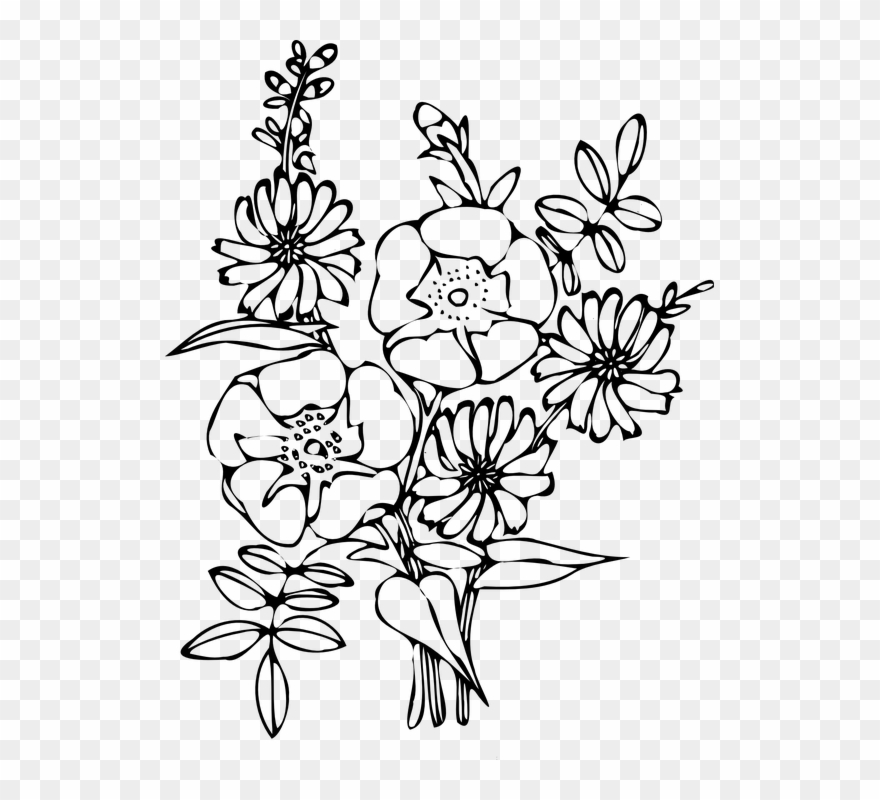 coloring flower clipart black and white flower outline coloring page free stock photo public coloring and flower black white clipart