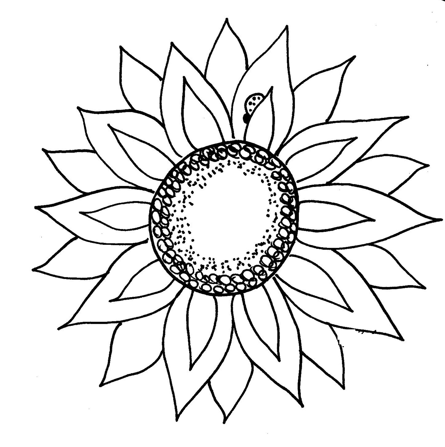 coloring flower clipart black and white flower outline pattern clipart best white black coloring flower and clipart