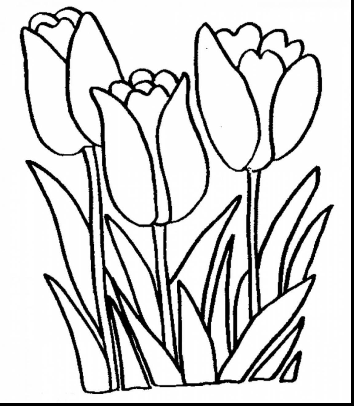 coloring flower clipart black and white spring flowers black and white clipart free download on white and black clipart flower coloring