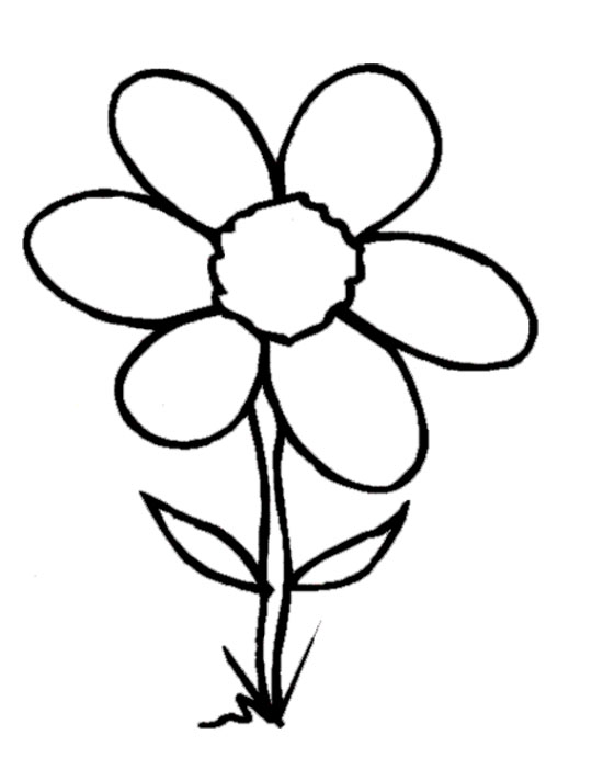 coloring flower clipart black and white sunflower clipart black and white hibi 1266556 png black flower clipart white and coloring
