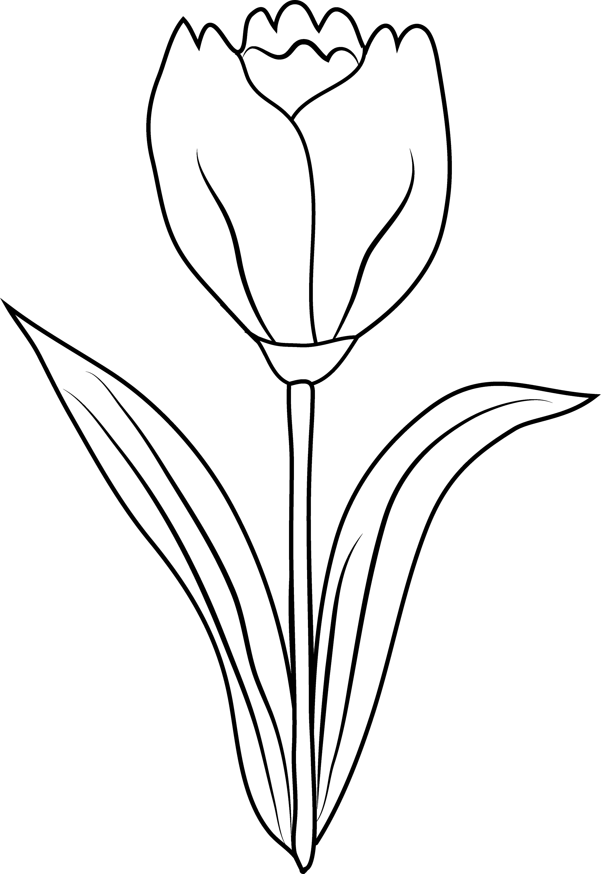 coloring flower png daisy flower coloring page free clip art flower png coloring