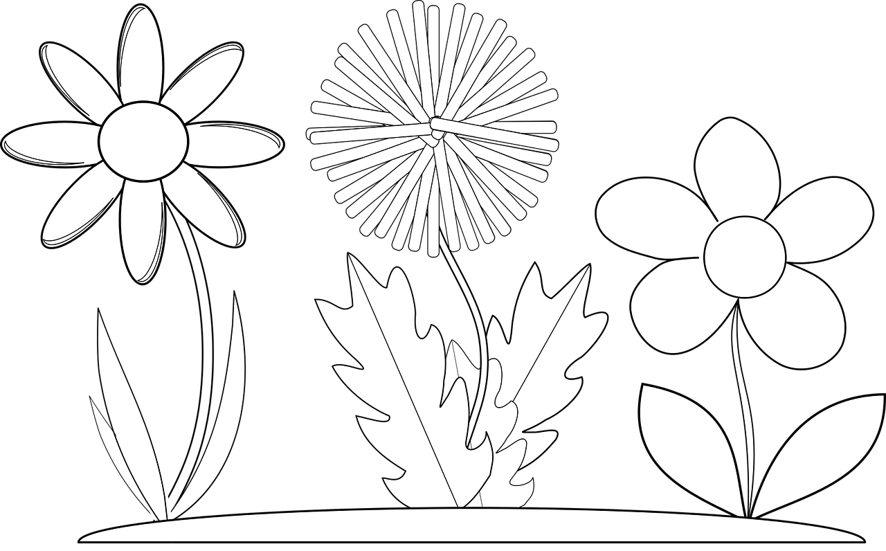 coloring flower png library of flower png transparent library coloring png flower coloring png