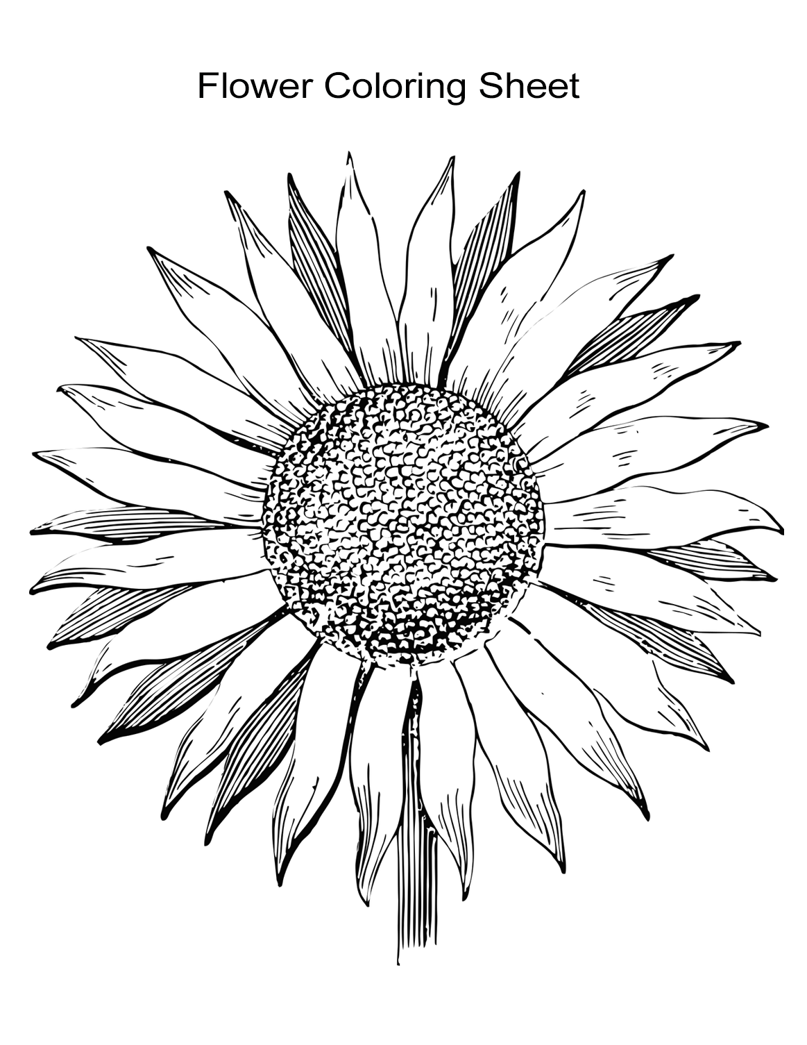 coloring flowers for adults free printable floral coloring page ausdruckbare for adults flowers coloring