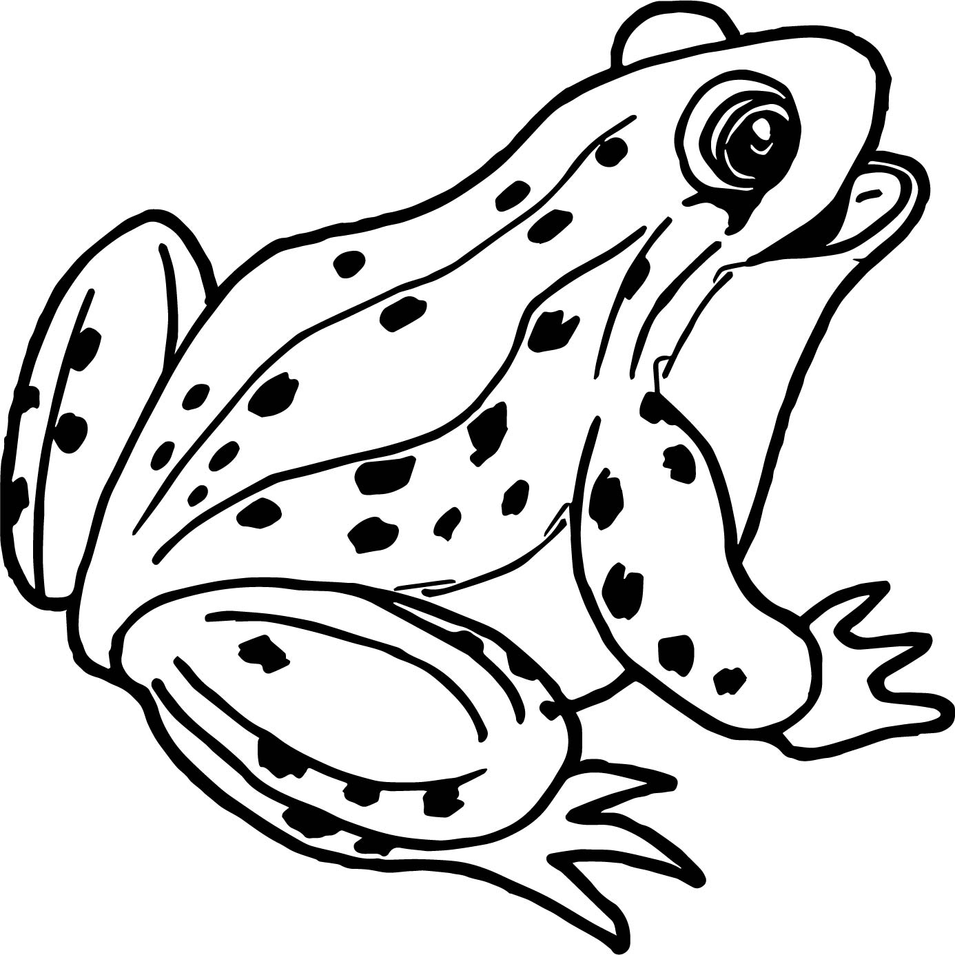 coloring frog outline images 55 free printable frog coloring pages in vector format images coloring frog outline