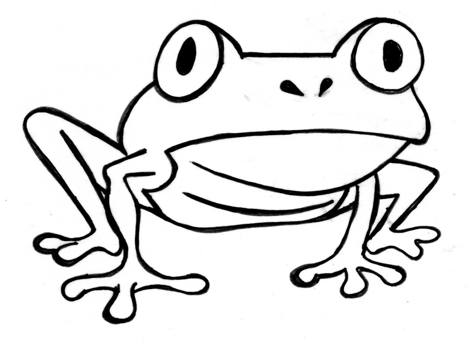 coloring frog outline images frog coloring page coloring page images coloring frog outline