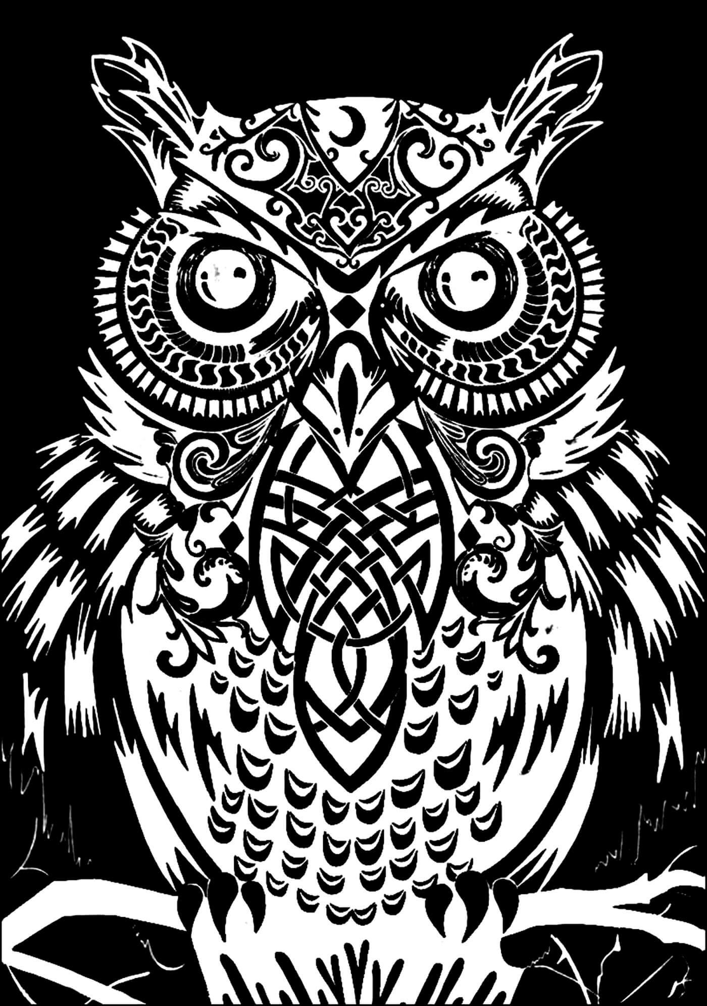 coloring kite images black and white coloring pages for adults difficult animals 47 coloring black images kite coloring and white