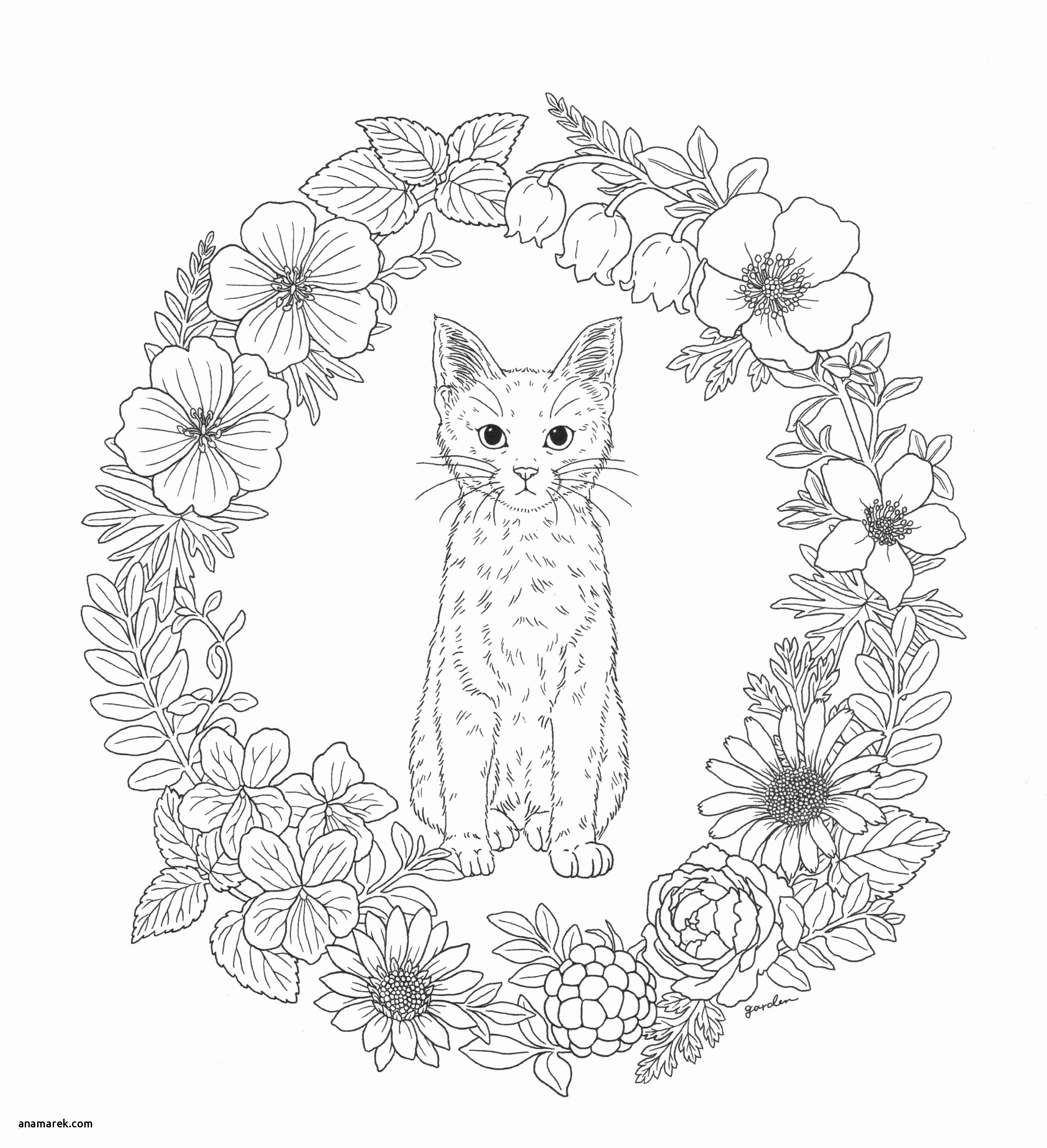 coloring mandala cat cat mandala coloring pages from new picts category mandala coloring cat