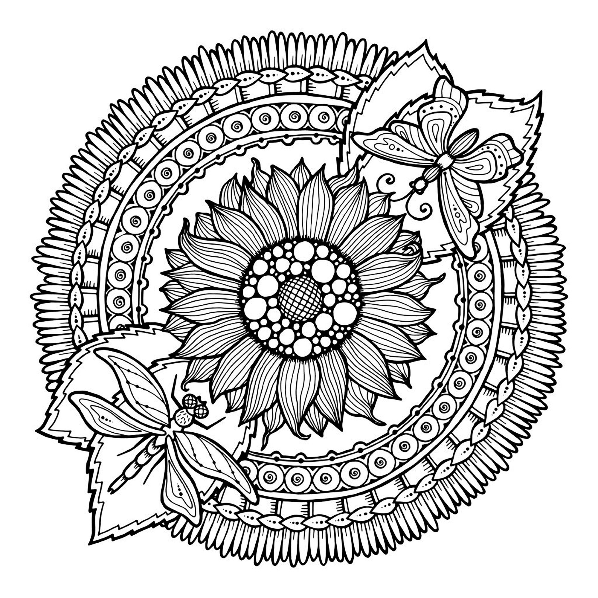 coloring mandala with color mandala dragonfly and flowers mandalas adult coloring pages with color mandala coloring