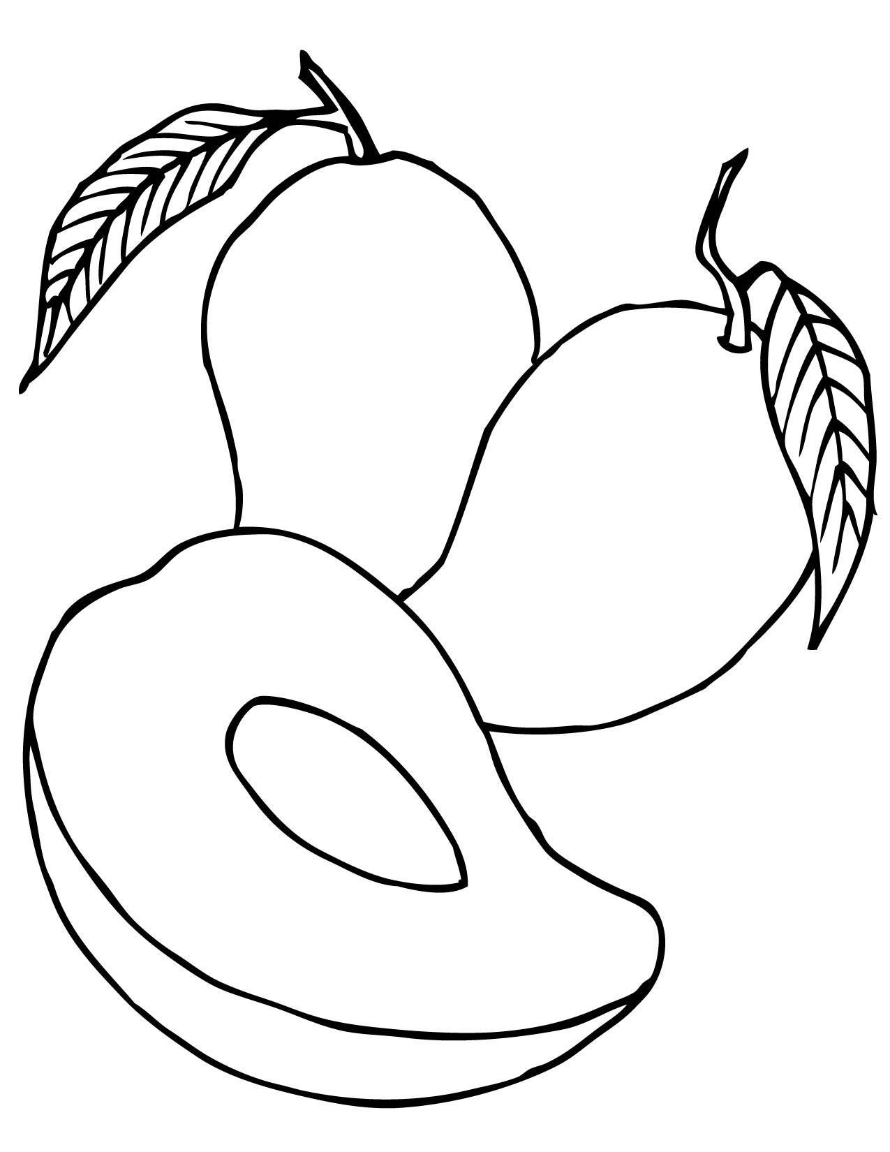 coloring mango clipart mango clipart coloring pages and other free printable coloring mango clipart