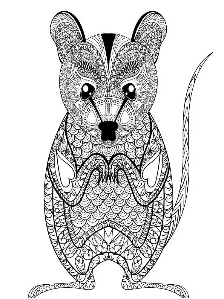 coloring mouse free mouse coloring pages for adults printable to mouse coloring 1 2
