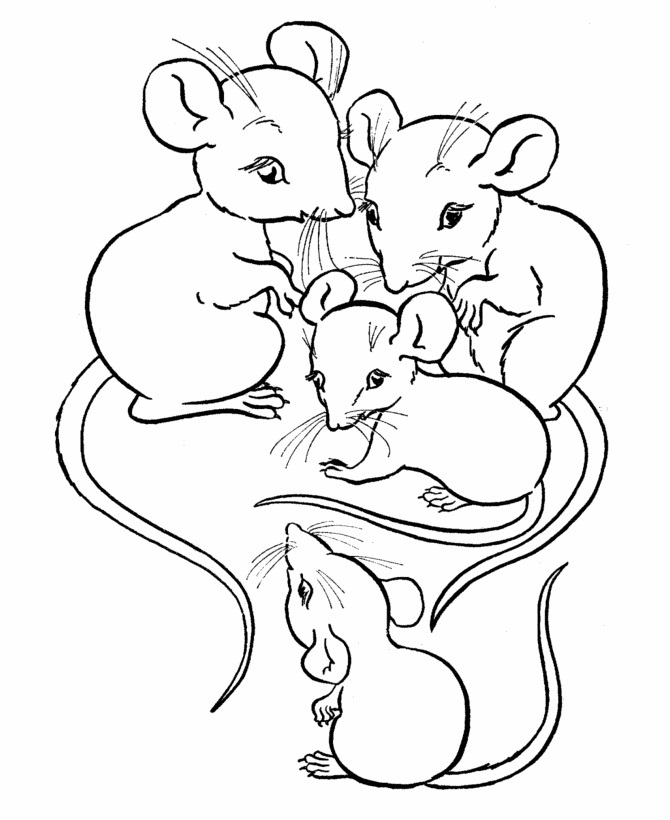 coloring mouse mouse coloring pages to print and customize for kids mouse coloring