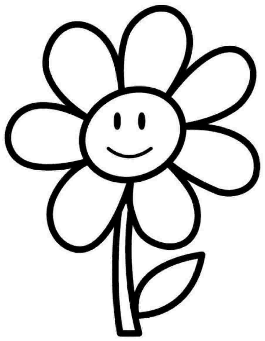 coloring outline images of flowers daisy flower outline free download on clipartmag of outline flowers images coloring