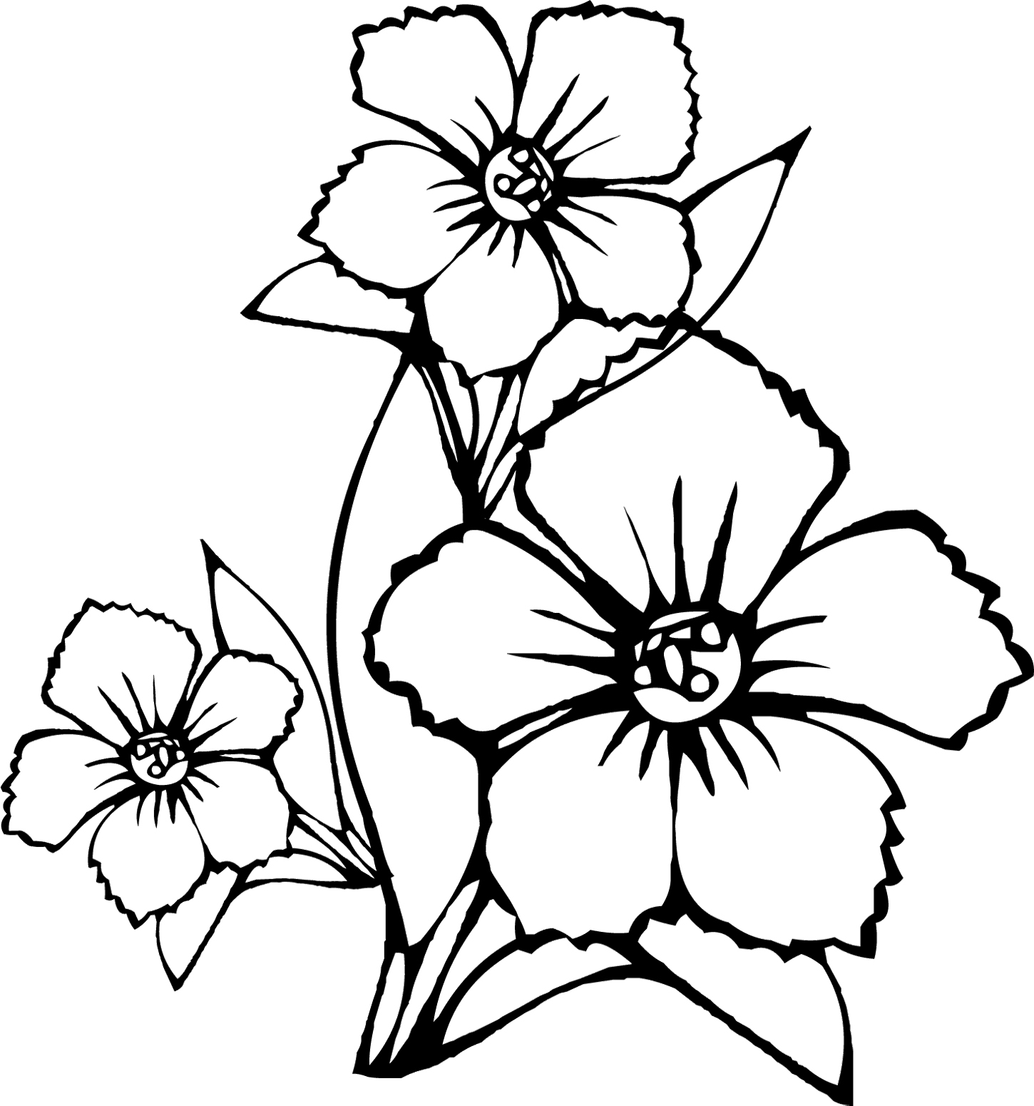 coloring outline images of flowers vanilla flower drawing at getdrawings free download flowers of images coloring outline