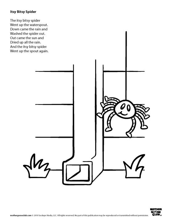 coloring page itsy bitsy spider jumping spider itsy bitsy coloring pages print coloring bitsy page itsy spider
