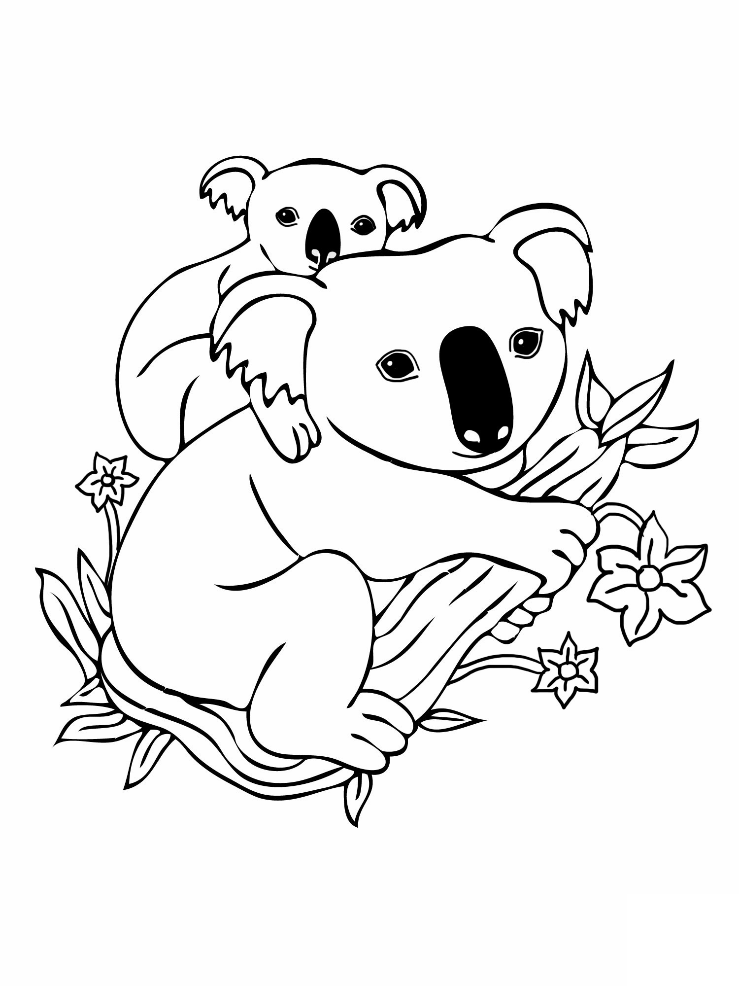 coloring page koala baby koala drawing at getdrawings free download coloring koala page