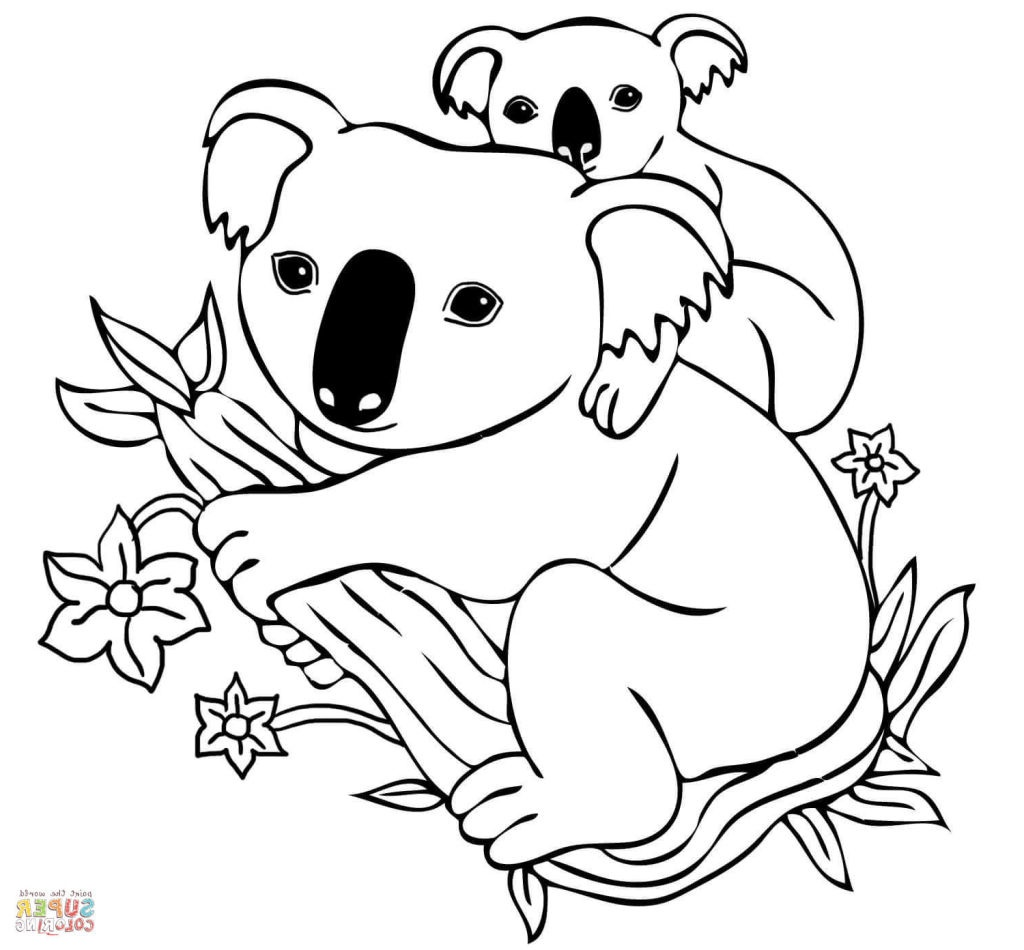 coloring page koala koala coloring pages download and print koala coloring pages koala coloring page