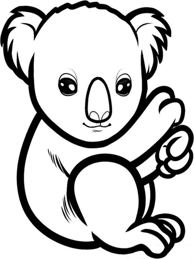 coloring page koala koala line drawing at getdrawings free download koala coloring page