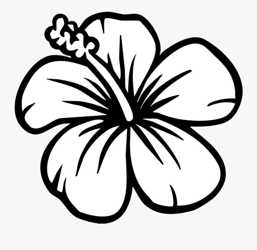 coloring page of a flower hibiscus flower coloring page free transparent clipart page a flower of coloring