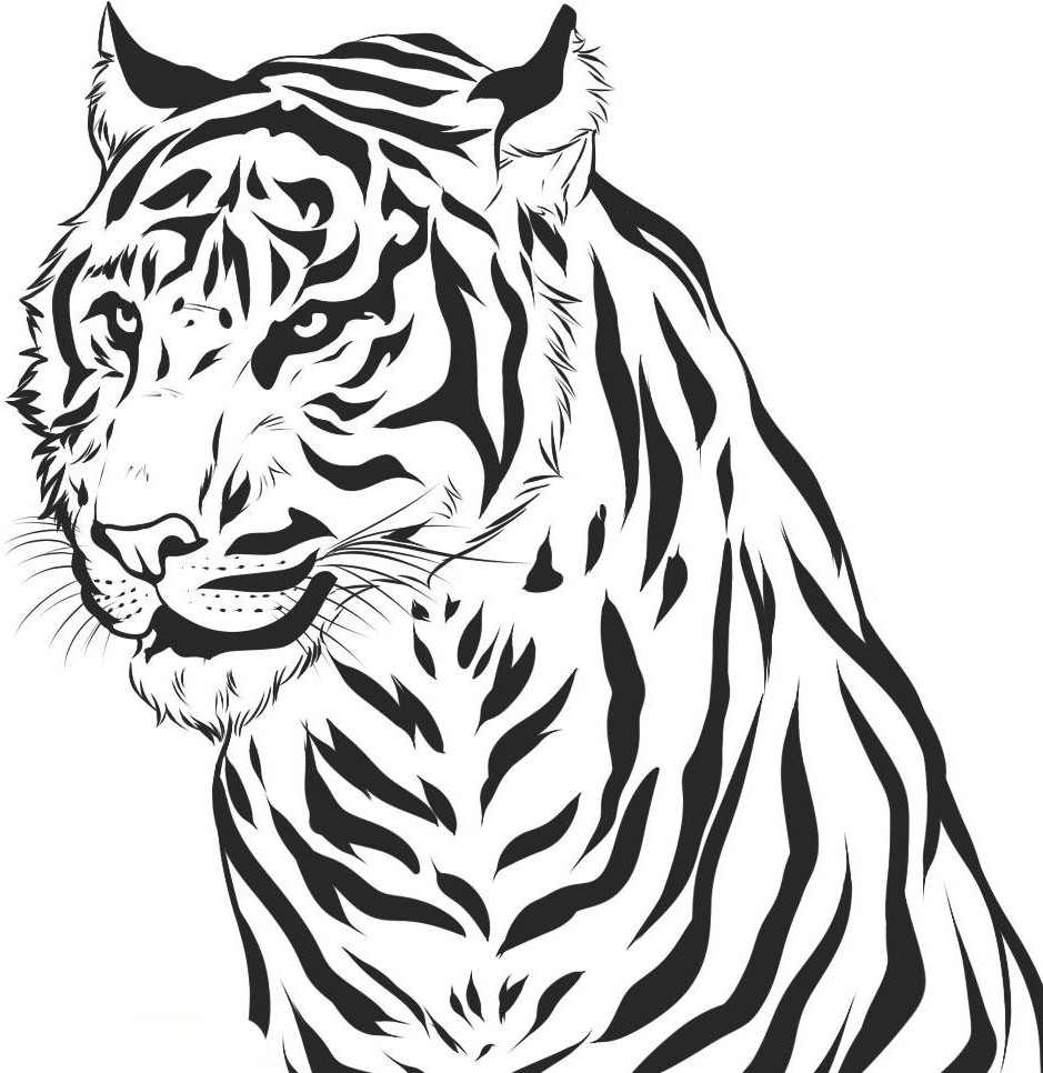 coloring page of tiger tiger face outline drawing at getdrawings free download coloring page tiger of