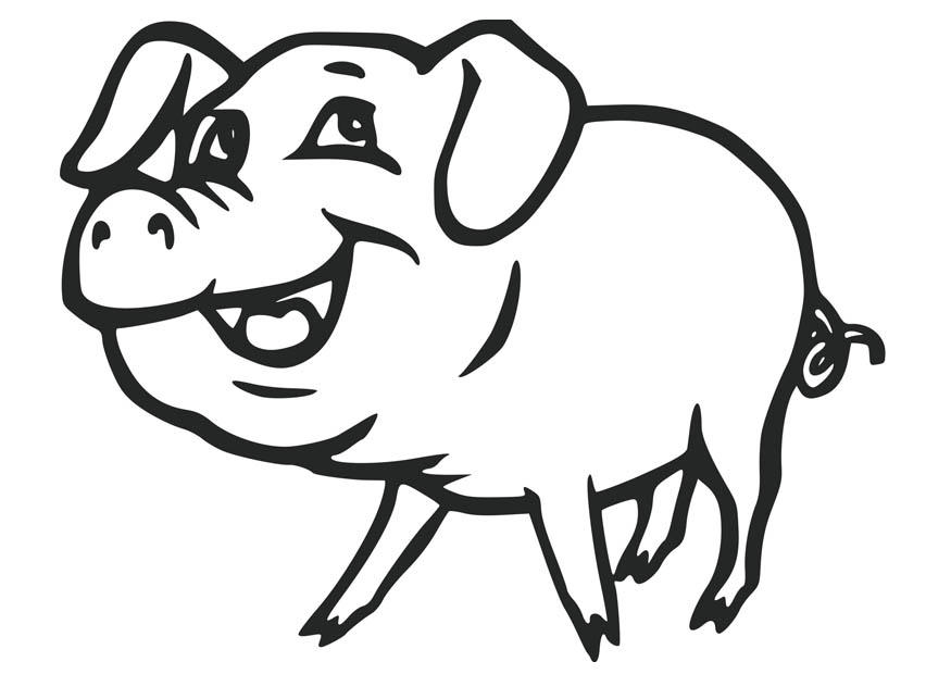 coloring page pig free printable pig coloring pages for kids cool2bkids coloring pig page 1 1