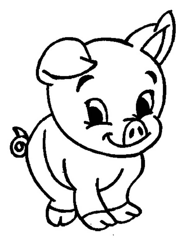coloring page pig pig face easy coloring pages coloring page pig