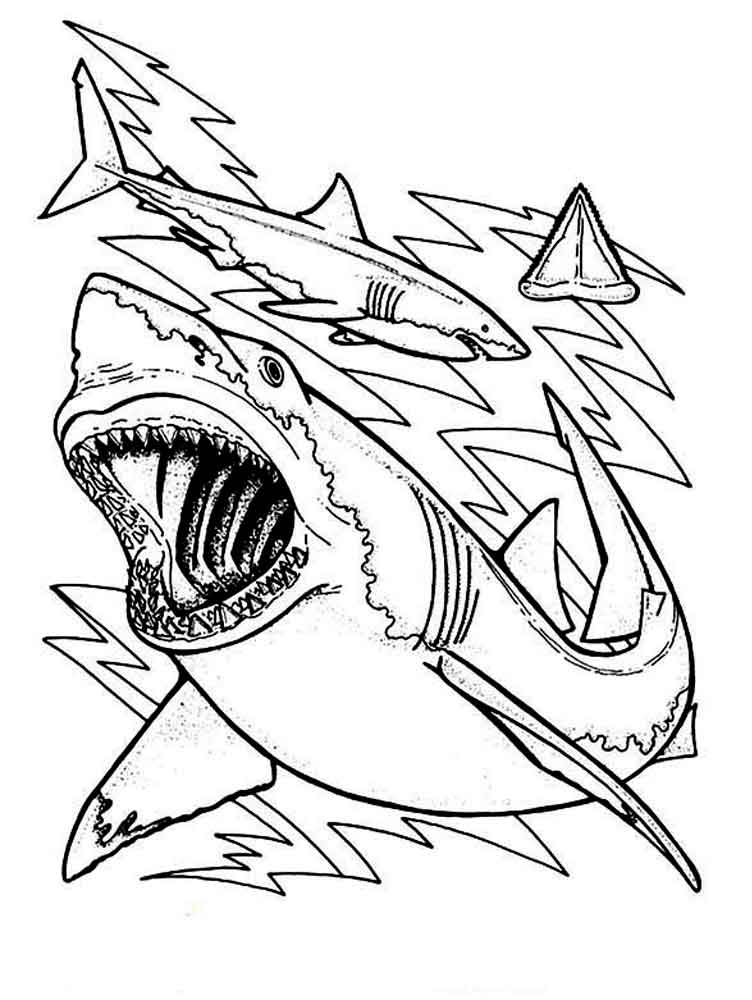 coloring page shark sharks coloring pages download and print sharks coloring shark coloring page