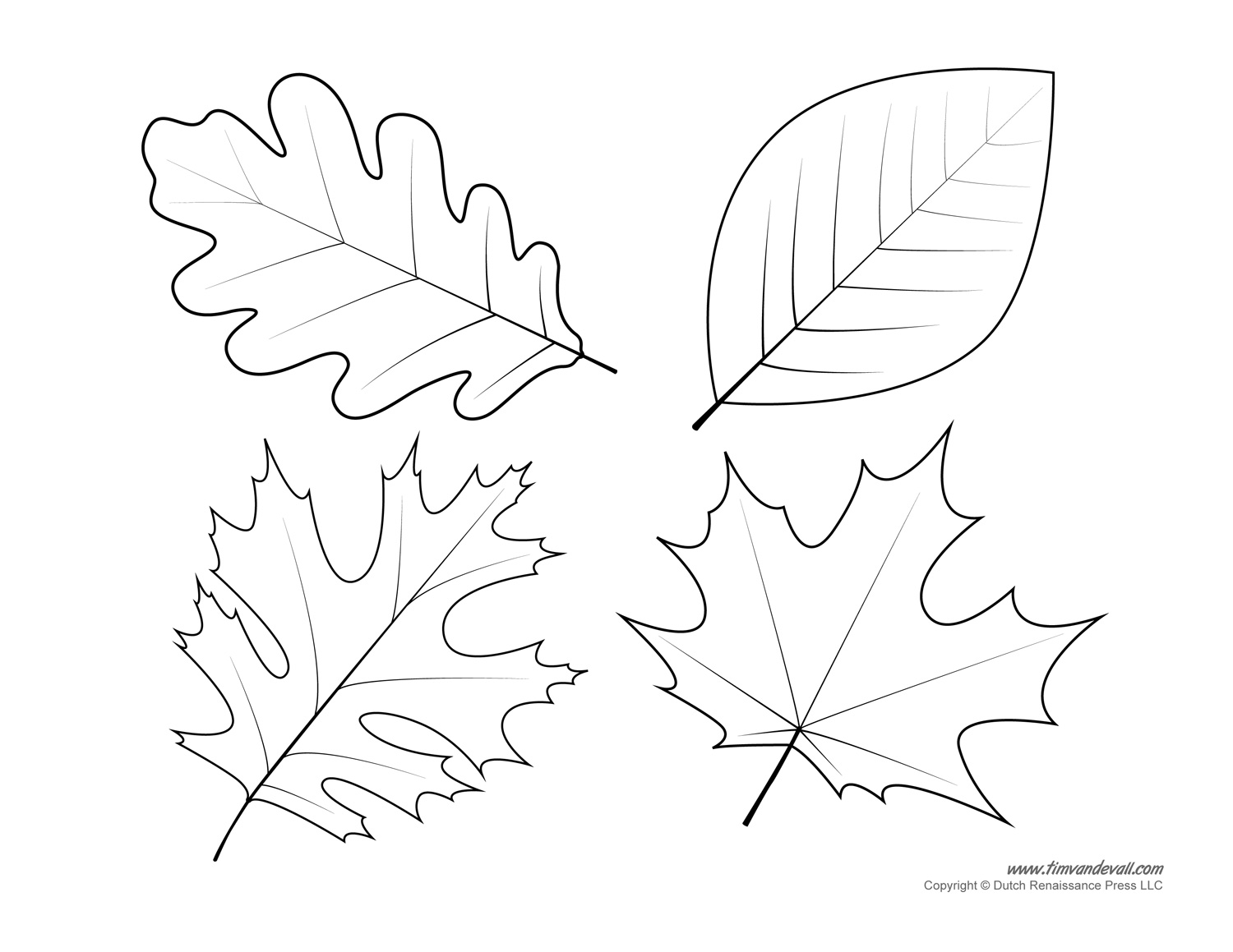 coloring page template printing leaf templates leaf coloring pages for kids leaf printing template page coloring