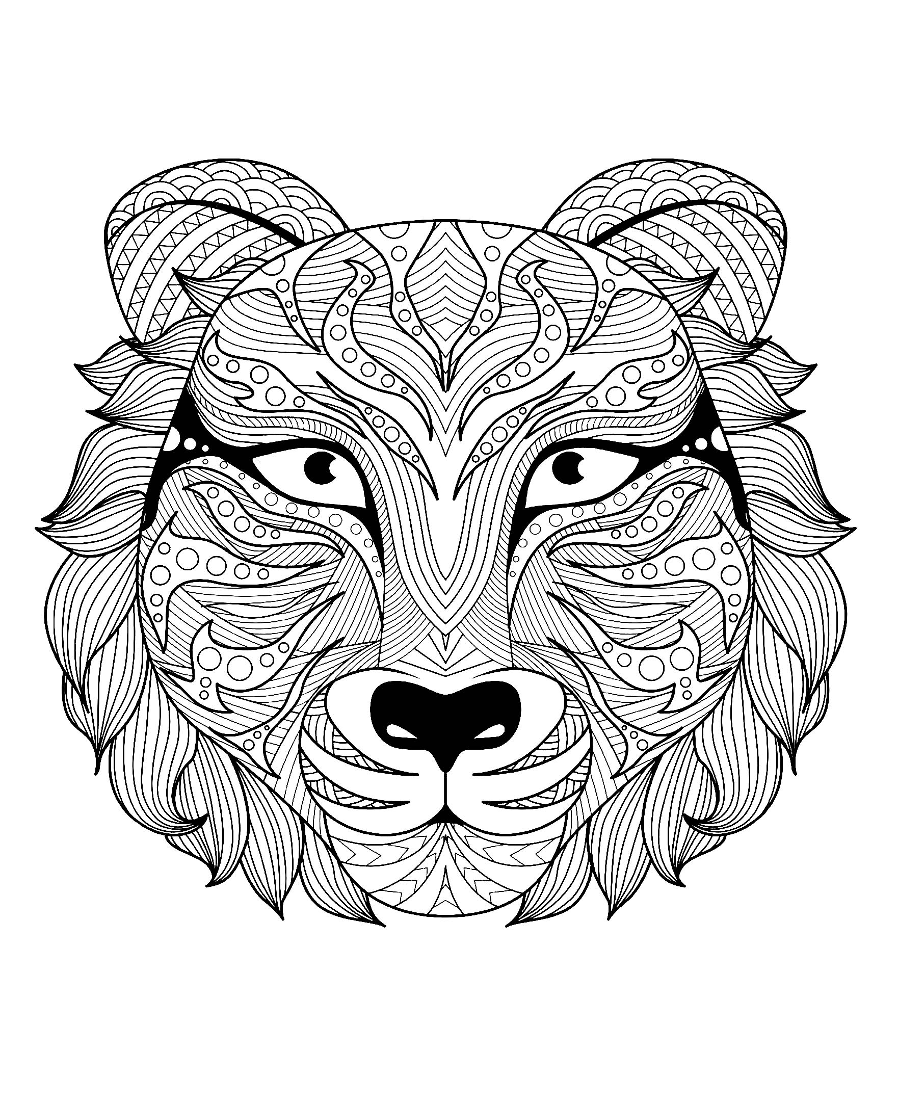 coloring page tiger tigers coloring pages coloring kids coloring kids coloring tiger page
