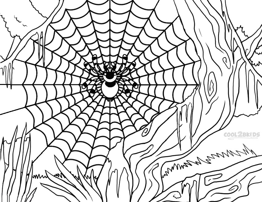 coloring page websites free printable spider coloring pages for kids page coloring websites