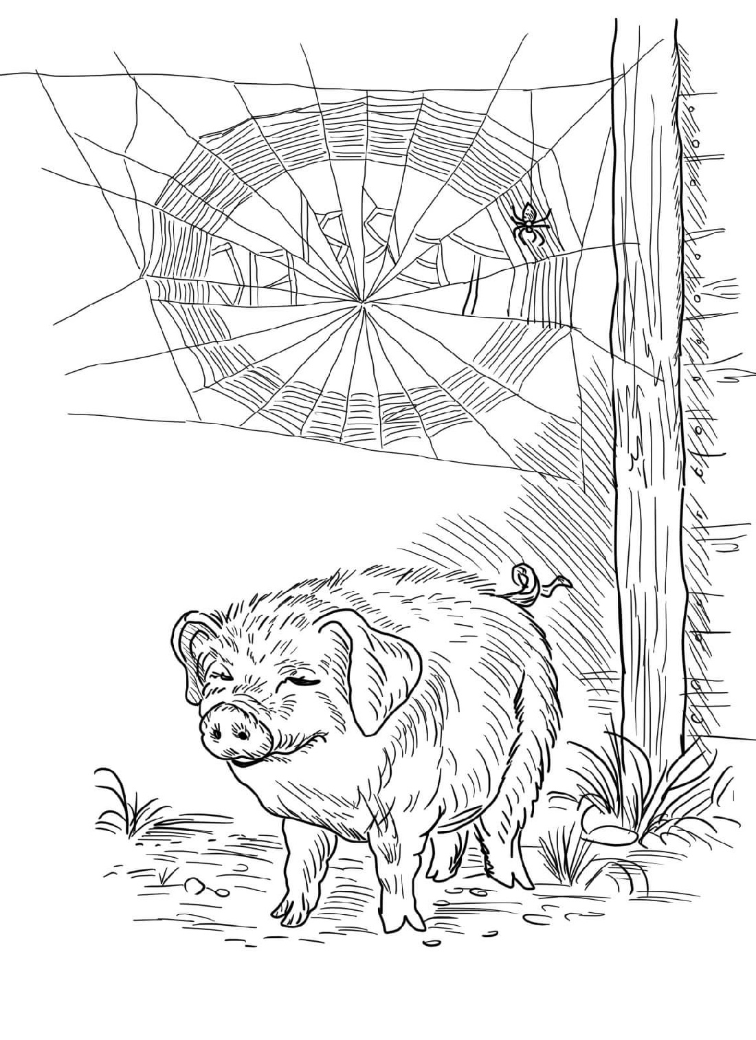 coloring page websites free printable spider web coloring pages for kids coloring page websites