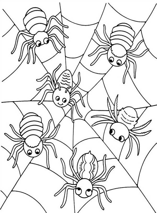 coloring page websites printable spider web coloring pages for kids coloring page websites