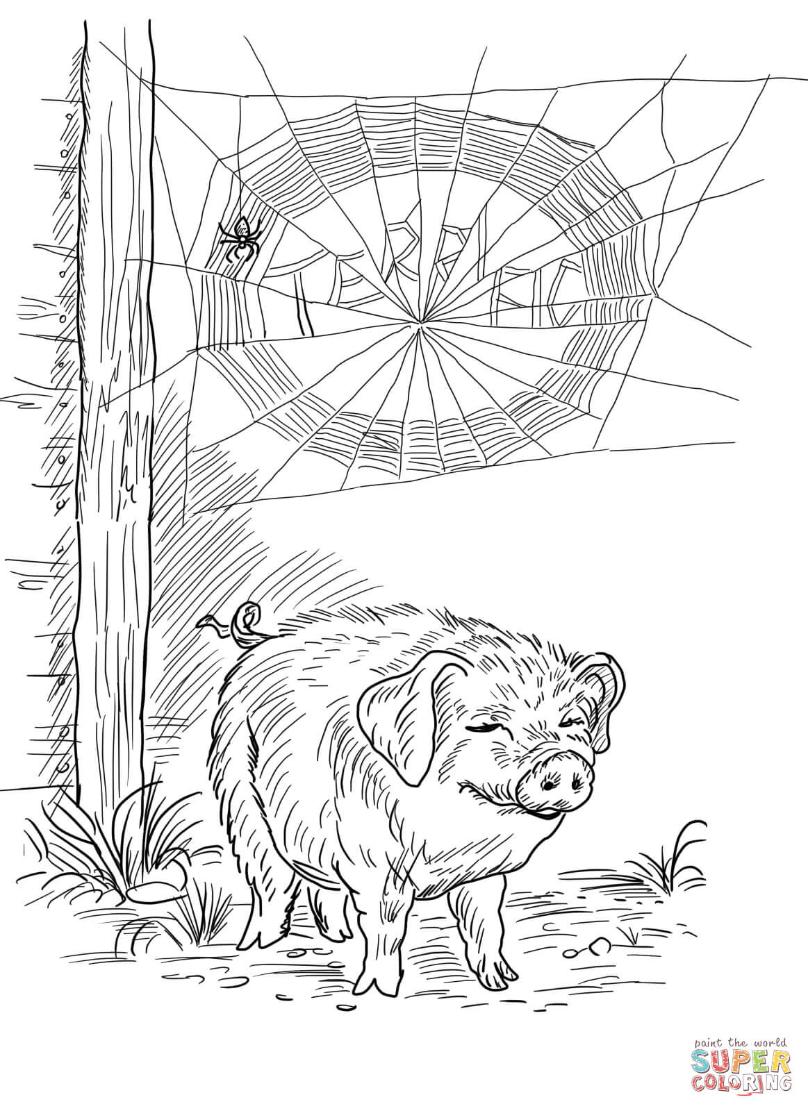 coloring page websites spider39s web coloring sheet topcoloringpagesnet page websites coloring
