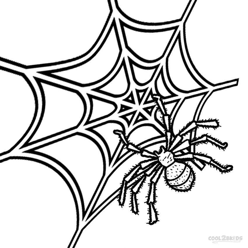 coloring page websites very large spider web coloring page color luna page coloring websites
