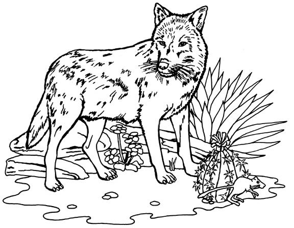 coloring page wolf wolf coloring pages download and print wolf coloring pages page coloring wolf