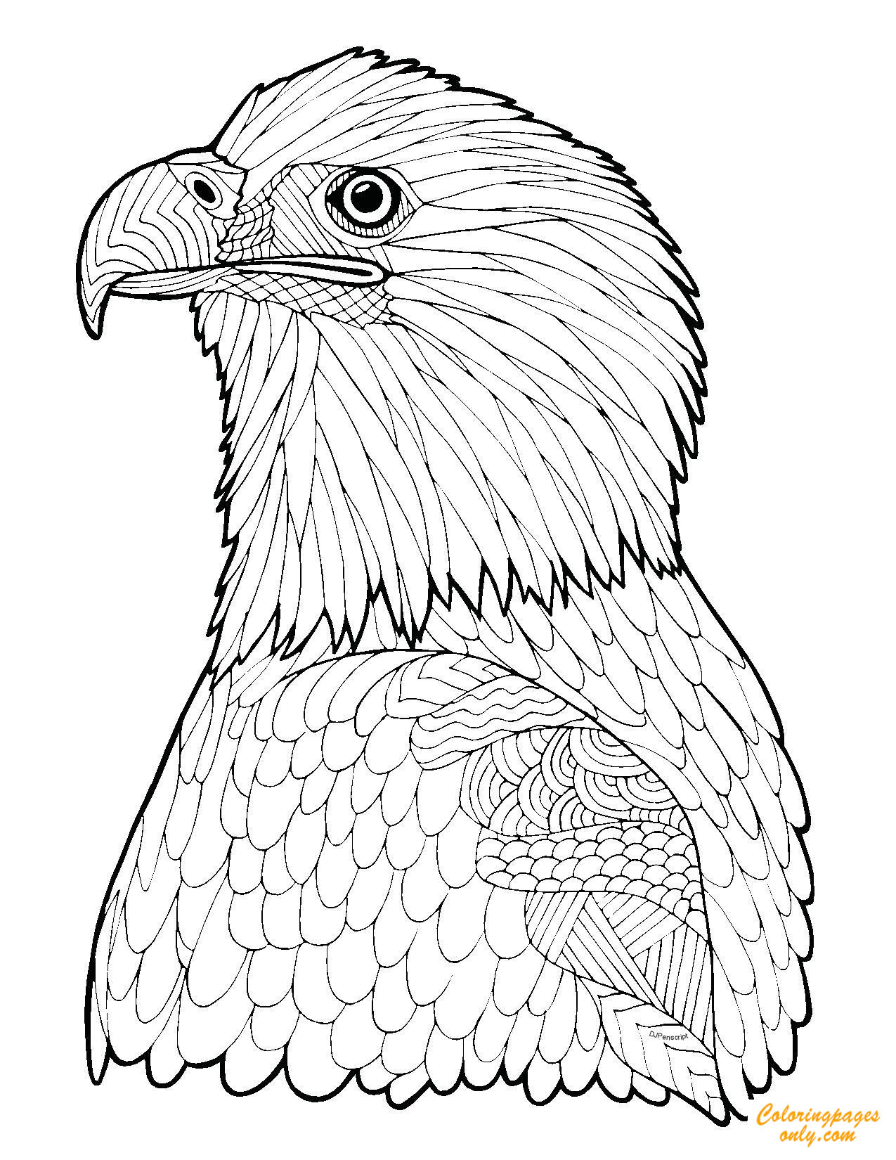 coloring pages eagle bald eagle in flight coloring page free printable coloring eagle pages