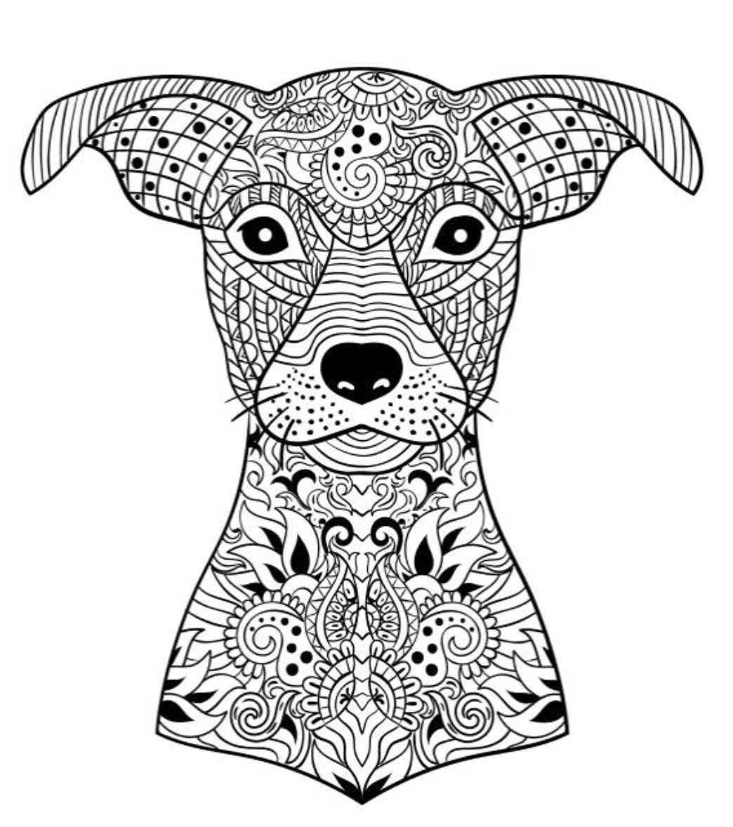 coloring pages for adults dogs 10 toothy adult coloring pages printable off the cusp coloring pages for adults dogs