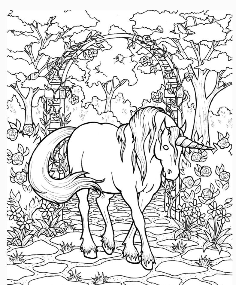 coloring pages for adults unicorn 58 adorable unicorn coloring pages for girls and adults coloring adults pages unicorn for
