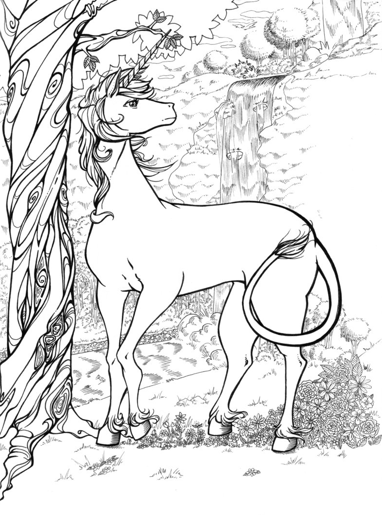 coloring pages for adults unicorn unicorn coloring pages for adults best coloring pages for pages adults coloring unicorn