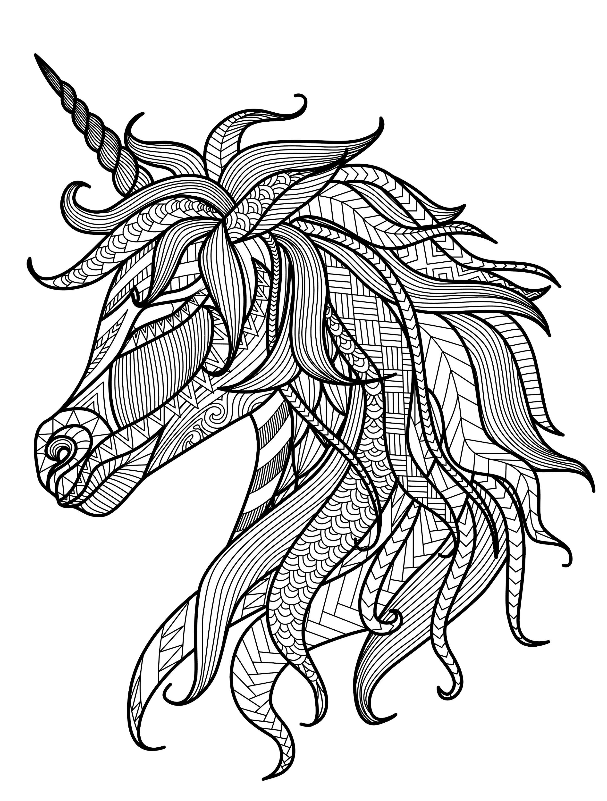 coloring pages for adults unicorn unicorn head simple unicorns adult coloring pages coloring pages unicorn for adults