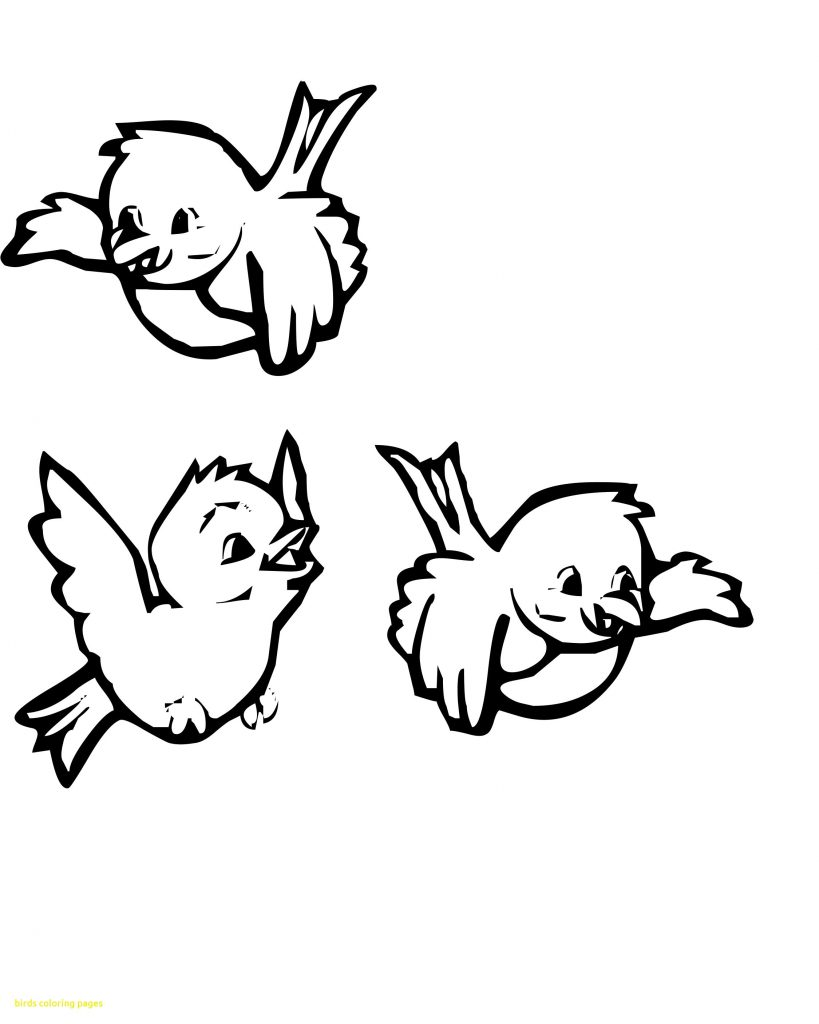 coloring pages for kids birds bird drawing for kids at getdrawings free download pages coloring kids birds for