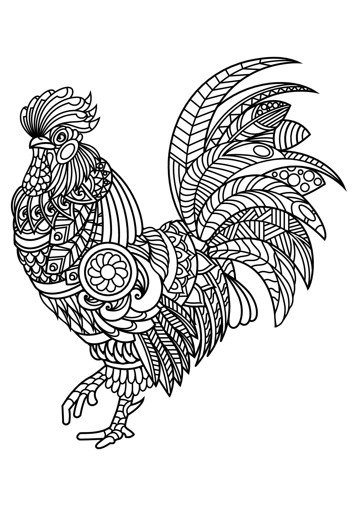 coloring pages for kids birds birds for kids birds kids coloring pages birds for kids pages coloring