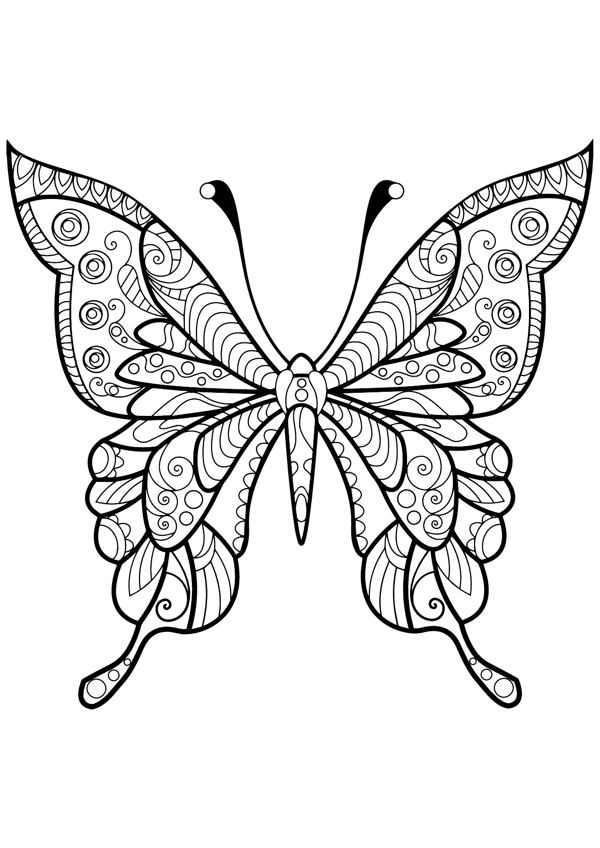 coloring pages for kids butterfly butterflies free to color for kids butterflies kids coloring for pages butterfly kids