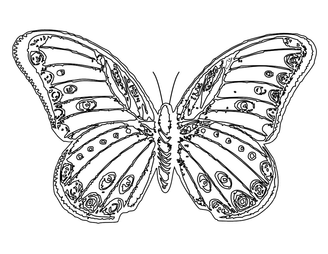 coloring pages for kids butterfly butterfly coloring pages for kids at getdrawings free coloring butterfly for pages kids