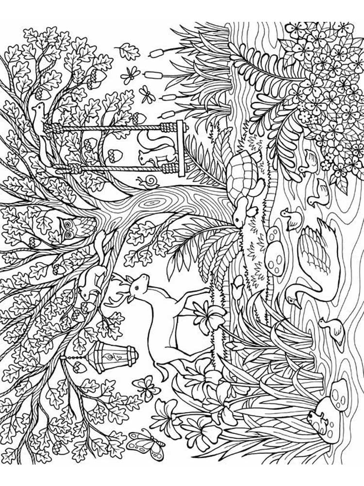 coloring pages forest forest coloring pages best coloring pages for kids pages forest coloring