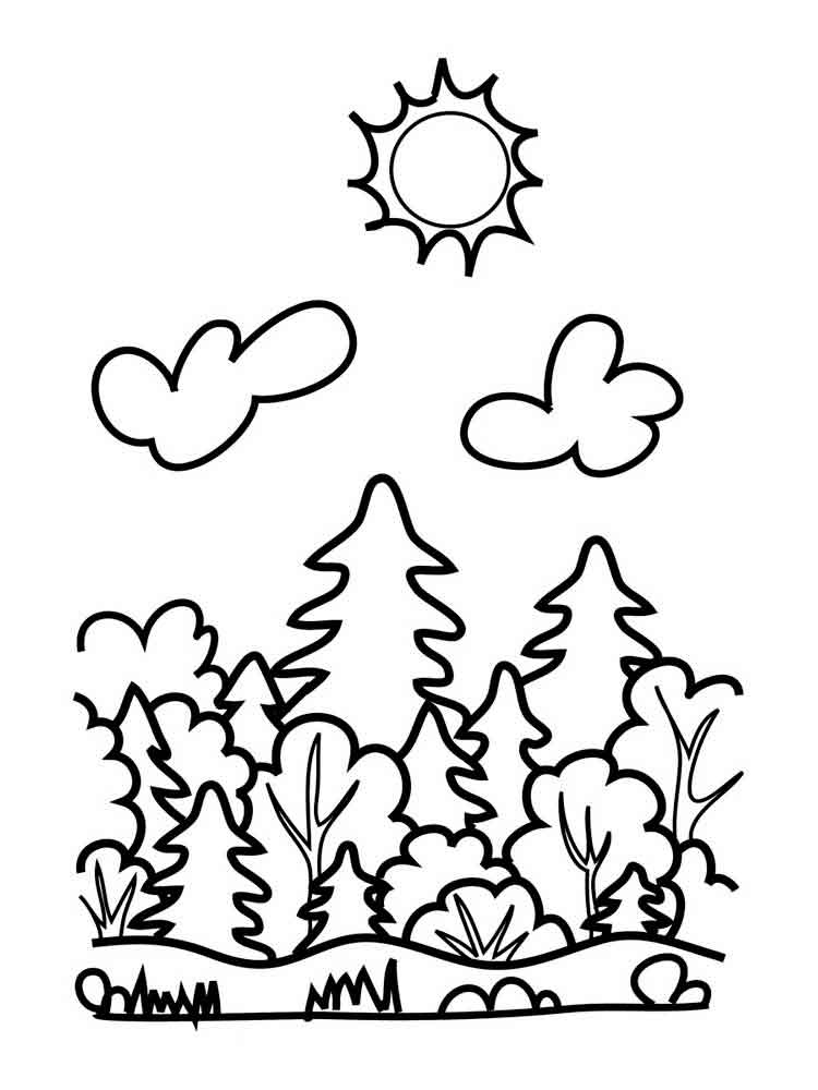 coloring pages forest forest coloring pages ideas whitesbelfast pages forest coloring