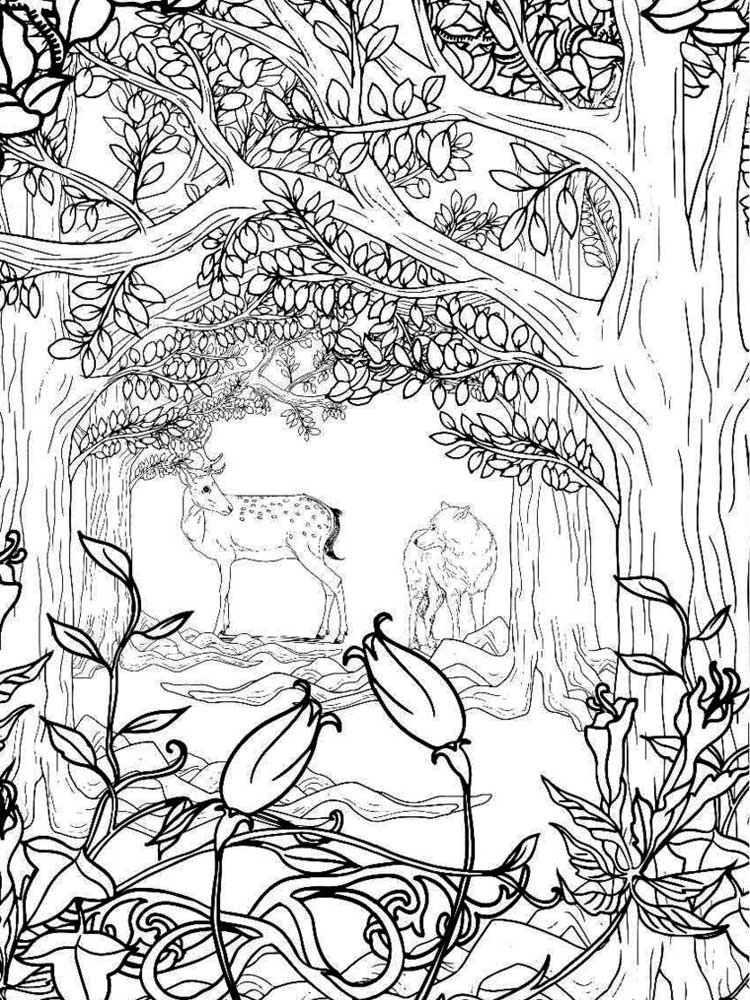 coloring pages forest forest coloring pages printable coloring home coloring forest pages