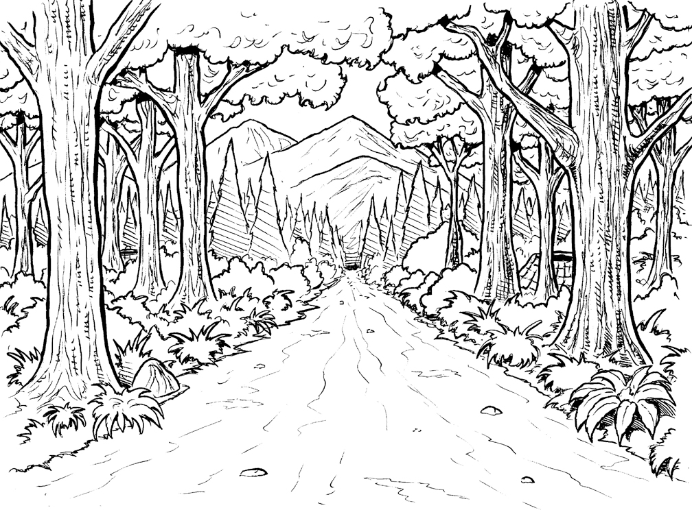 coloring pages forest forest pencil drawing at getdrawings free download pages coloring forest