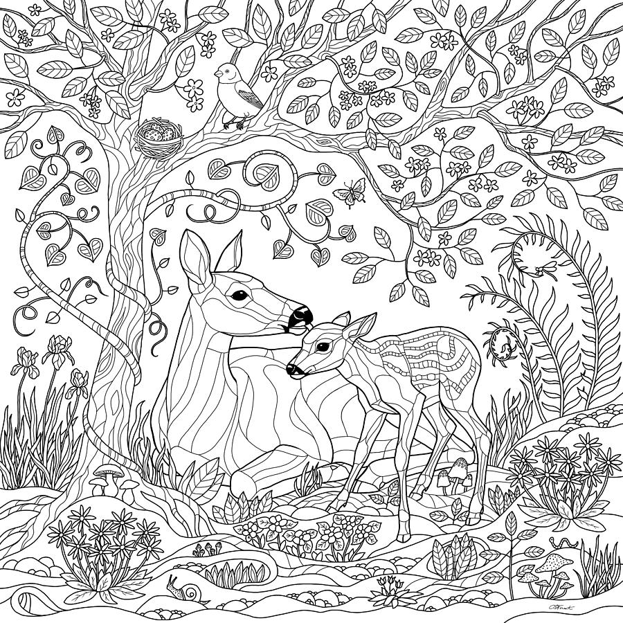 coloring pages forest rain forest trees coloring page coloring home pages coloring forest