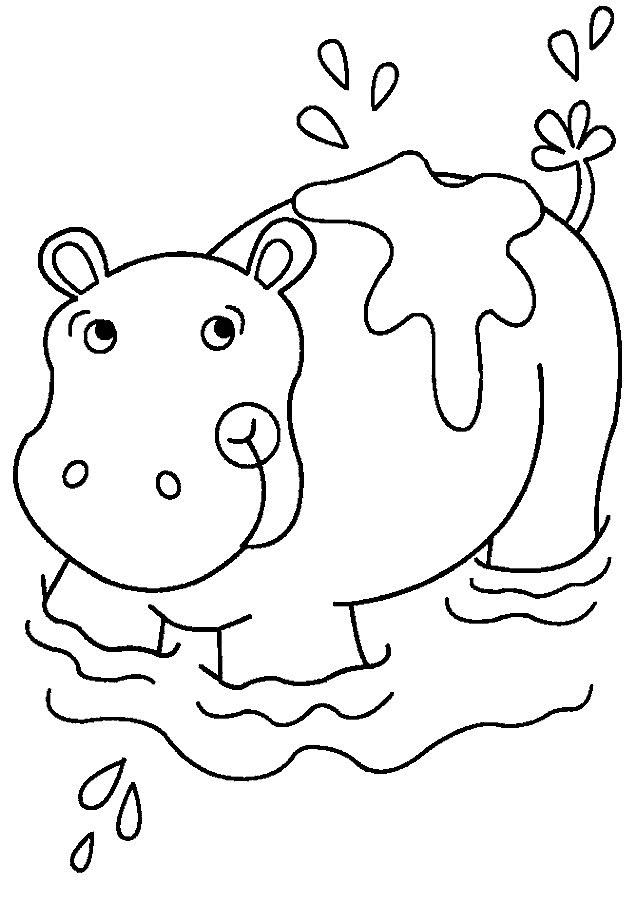 coloring pages hippo hippo resting coloring pages for you pages hippo coloring